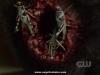 supernatural-s06e03-00102